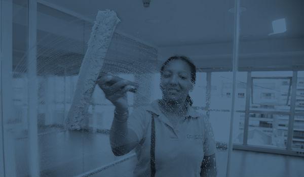 Servicio de Limpieza Ventanales Ventanas Vidrios Oficinas Industria